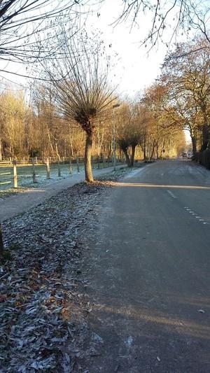 ドイツ  冬