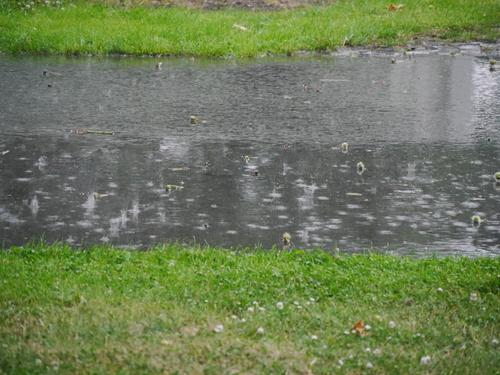 6月 ドイツ 雷雨