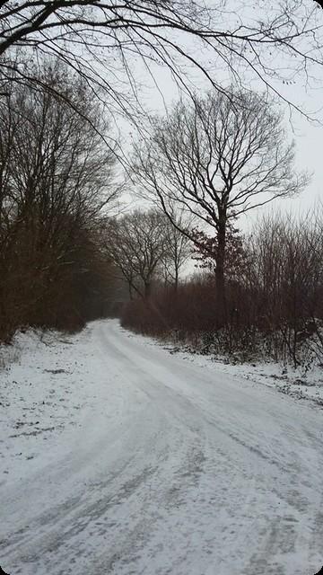 北ドイツ 冬 雪