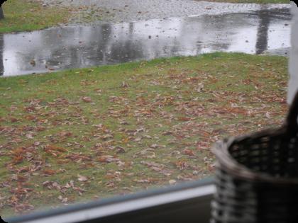 ドイツ 雨
