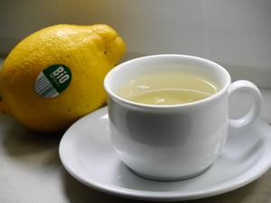 【ドイツで踏ん張る為の安くて簡単料理】疲労回復、血液サラサラにレモンのはちみつ漬け。
