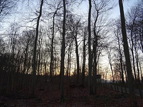 020 ドイツ 風景