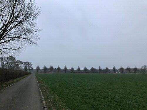 2020 ドイツ 風景